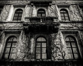 picture of dead plant  - Halloween Image Of A Spooky Old House Covered In Dead Vines - JPG