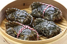 image of cooked crab  - raw chinese mitten crab - JPG