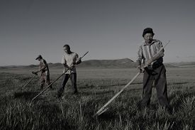 image of mongolian  - Mongolian Farmers Working Hard Agricultural Crop Concept - JPG
