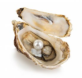 pic of pearl-oyster  - Oyster with pearls isolated on white background - JPG