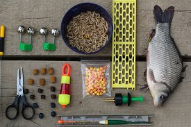 image of fishing bobber  - Big professional fishing set of many equipments of scissors maggots hook bait bobber jig and fresh fish lying on wooden table top horizontal picture - JPG