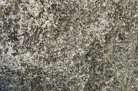 stock photo of dapple-grey  - Texture of the natural gray stone surface - JPG