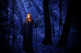 image of moonlight  - Young witch at night in the moonlight forest - JPG