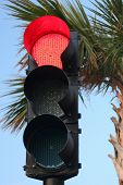 Tropical Red Trafic Light
