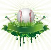 vector baseball sport design element