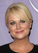 PASADENA, CA - JAN 13:  Amy Poehler arrives at the NBC All-Star Party on January 13, 2011 in Pasaden
