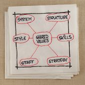 7S model for organizational culture, analysis and development (skills, staff, strategy, systems, str