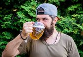 Hipster Brutal Bearded Man Hold Mug Cold Fresh Beer. Alcohol Drink And Bar. Craft Beer Is Young, Urb poster