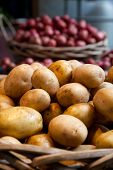 Yukon Gold Potatoes Sit In A Basket At A Local Farmers Market Stand