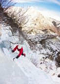 Ice climber on a steep ice fall; he climbs using two ice axes. Vertical frame; west Alps, Italy, Europe.