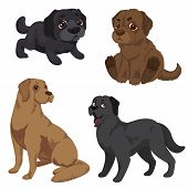 Labrador Icons Set. Cartoon Set Of Labrador Vector Icons For Web Design poster