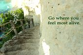 Inspirational Motivational Quote- Go Where You Feel Most Alive. With Outdoor Beautiful Natural Stair poster