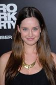 LOS ANGELES - DEC 10:  Merritt Patterson arrives to the 'Zero Dark Thirty' premiere at Dolby Theater on December 10, 2012 in Los Angeles, CA