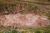 Salt Pans At Maras (salineras De Maras), Peru