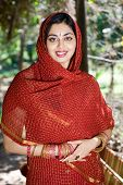 picture of traditional dress  - Closeup portrait of a beautiful indian woman wearing a traditional embroidered sari - JPG