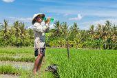 BALI - 15 DE FEVEREIRO. Agricultor hidratante enquanto trabalhava no campo de paddy, em 15 de fevereiro de 2012, em Bali, Indo