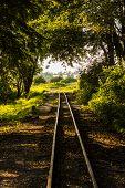 Historic Narrow Railroad Track - Poland, Znin.