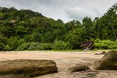 Tropical Rainforest Gives Way To An Empty Sandy Beach