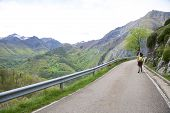 Walking On Road At Picos De Europa