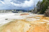 Yellowstone National Park - Travertine patterns at Mammoth Hot Springs, , Wyoming, USA
