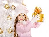 Child in hat and mittens holding gold  gift box near white Christmas tree. Isolated.