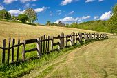 Wooden Fence In Green Landscape