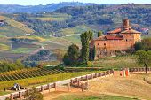 View on abandoned castle and autumnal vineyards of Langhe in Piedmont, Northern Italy.