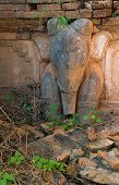 Elephant Image In Ancient Burmese Buddhist Pagodas