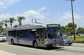 Broward County Transit Bus