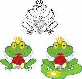 Smiling Bride Frog. Set Collection