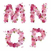 Spring alphabet with cherry flowers MNOP