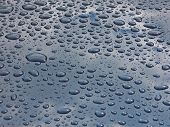 Drops On Car