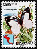 Postage Stamp Nicaragua 1982 Myrrhina Sailor, Butterfly