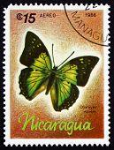 Postage Stamp Nicaragua 1986 Charaxes Nitebis, Butterfly