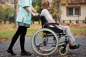 stock photo of hospice  - Caregiver on a relaxing walk with elder woman on wheelchair - JPG