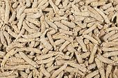 stock photo of ginseng  - Chinese Ginsengs - JPG