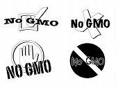 No Gmo Symbols
