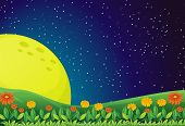 picture of moon-flower  - Illustration of the bright moon and the sparkling sky - JPG