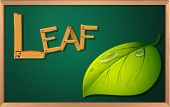 Illustration of a blackboard with a leaf