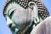 pic of kanto  - Great Buddha of Kamakura  - JPG