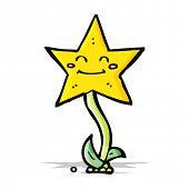 cartoon star flower