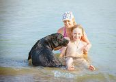 Happy family with dog playing in water