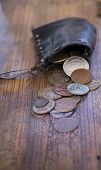Purse With Old Coins