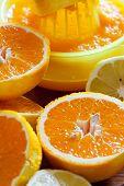 Juicy Halved Oranges As Closeup