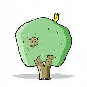 cartoon tree with birdhouse