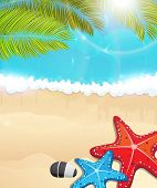 Beach With Palm Branches And  Starfishes