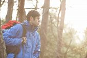 Make hiker carrying backpack in forest