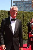 LOS ANGELES - AUG 16:  Anthony Bourdain at the 2014 Creative Emmy Awards - Arrivals at Nokia Theater