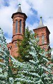 Smithsonian's towers.