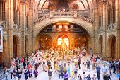 Interior view of Natural History Museum with lots of visitors. London